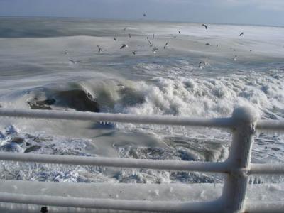 mira la mar / poesía